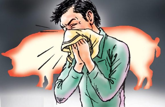 Swine flu: Is it such a big deal?