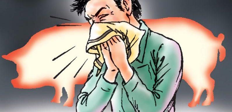 Swine flu: Is it such a big deal?
