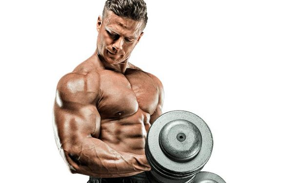 Exercise, Food and Supplements for Bulging Biceps